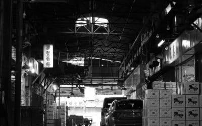 Die Ausbildung zum Groß- und Außenhandelskaufmann