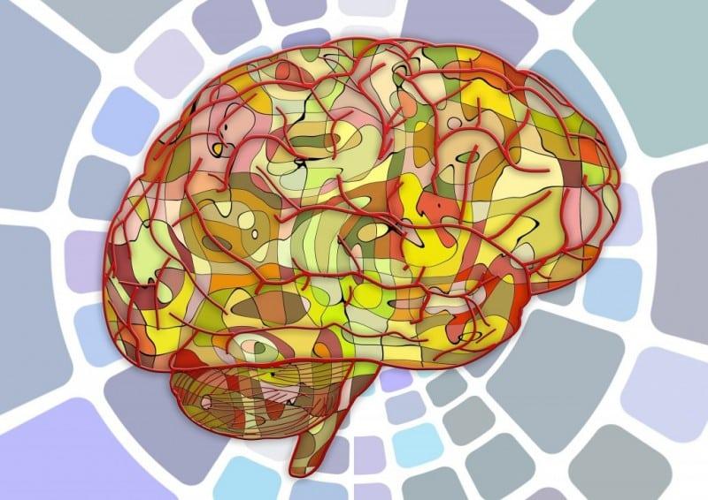prüfungsvorbereitung psychologie